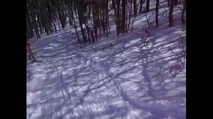 Buzludja slalom in the forest