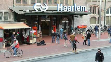 Haarlem Shake [original]