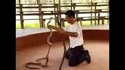 Укротител На Змии