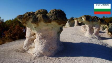 Каменните гъби край Бели пласт в Родопа планина