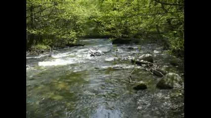 Природа :)