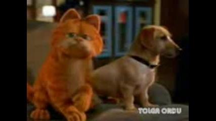 Garfield -bomba, bomba- New Hit