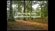 Parni Valjak - Jesen U Meni