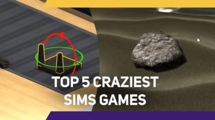 5 Craziest Sims