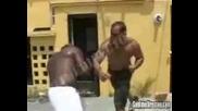 Бой между двама здавеняци ! ! !