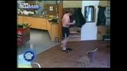 Да ти залепят чехлите за пода смях