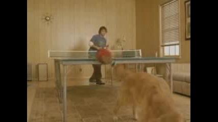 Пинг Понг С Куче