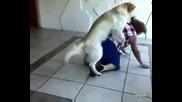 Куче се опитва да нае^е бабка :d !смяхх!!