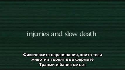 Фаза 3 еп. 16 - Модерно убийство