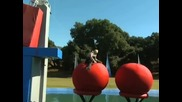 Total Wipeout Big Balls