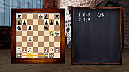 9411-05 - Chess Combinations and Kings in Check
