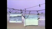 Белинда Карлайл - Кръг в пясъка