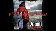 Danny Fernandes Feat. Pitbull - Private Dancer (remix)
