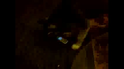 Видео0034