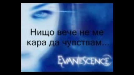 Evanescence - Anything For You Bg Превод