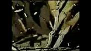 Godsmack  -  Moonbaby