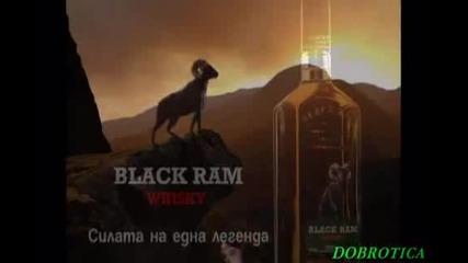 Химн на алкохолиците-алкохолна Дружинка