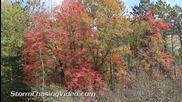 Златна есен в Уисконсин 28.9.2014