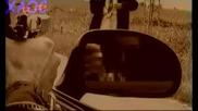Радо Шишарката - бели птици