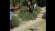 Mitko - Cjc Smal Summer Video