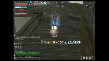 dvp of Exile Alliance (lineage 2 Teon)