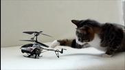 Коте и хеликоптер