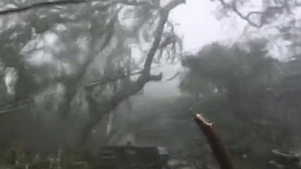 Bermuda: Heavy winds and rainfall as Hurricane Nicole hits Hamilton