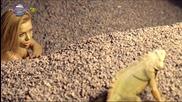 Magda -  Жълтата клюка 2014 - Youtube[via torchbrowser.com]