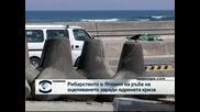 Рибарството в Япония пред колапс заради ядрената авария във Фукушима