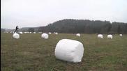 Норвежеца в поле с бали