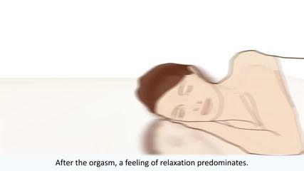 The female orgasm explained