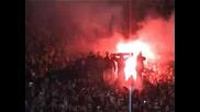 Crvena Zvezda Ultras