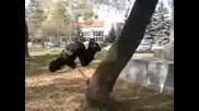 Първият Ми Wallspin На Дърво[jojkooo][xfs™]