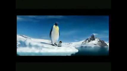 Пингвин футболист