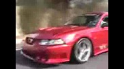 2001 Ford Mustang Saleen S281 - Exotic - carsinfo20