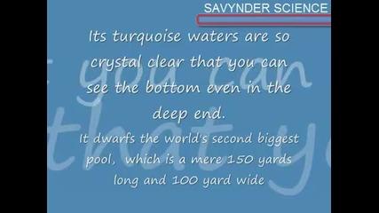 The World Biggest Pool [най - Големият Басейн На Света] {hd}