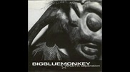 Big Blue Monkey - Truth In Separation 1999 Ep Album