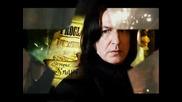 Алън Рикман - Candy Shop