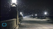 Bridge Closed Over Swarms of Mayflies