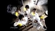 Arashi - C1000 Lemon