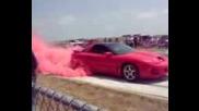 Pink Trans Am Burnout