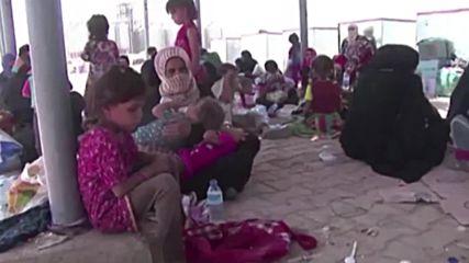 Ирак: Стотици бягат от Шаркат, превзет от терористите