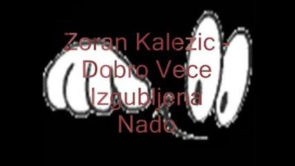 Zoran Kalezic - Dobro Vece Izgubljena Nado