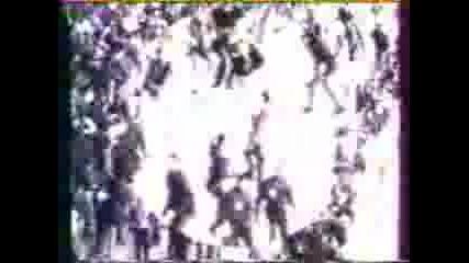 France Hooligans - Boulogne Boys