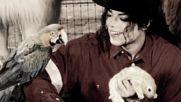Michael Jackson You Can Be King Again / В чест и почит към Краля /...25.06.2016
