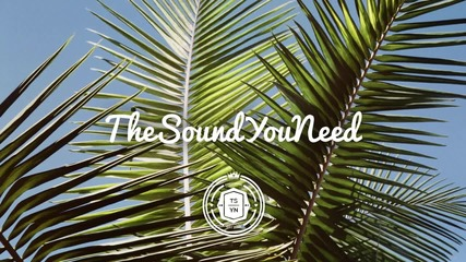 Basenji - Dawn / The sound u realy need