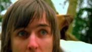 Jim Noir - My Patch [Video] (Оfficial video)