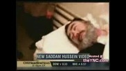 Смъртта На Садам - След Обесването - На Легло