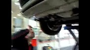 Плъх тъпче орехи в Audi