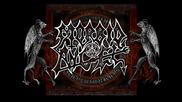Morbid Angel - Radikult (illud Divinum Insanus - 2011)